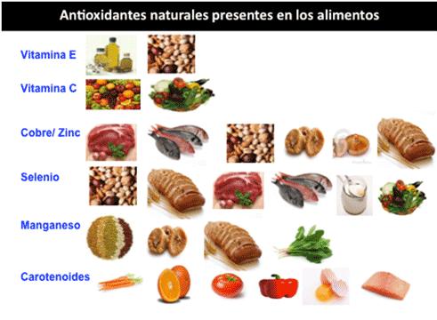 piramide-nutricionalA