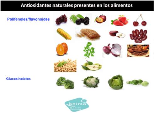 piramide-nutricionalB
